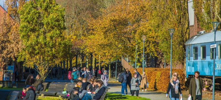 Autumn at Chalmers