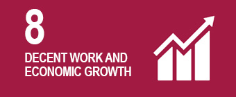 UN global goal 8: Decent work and economic growth