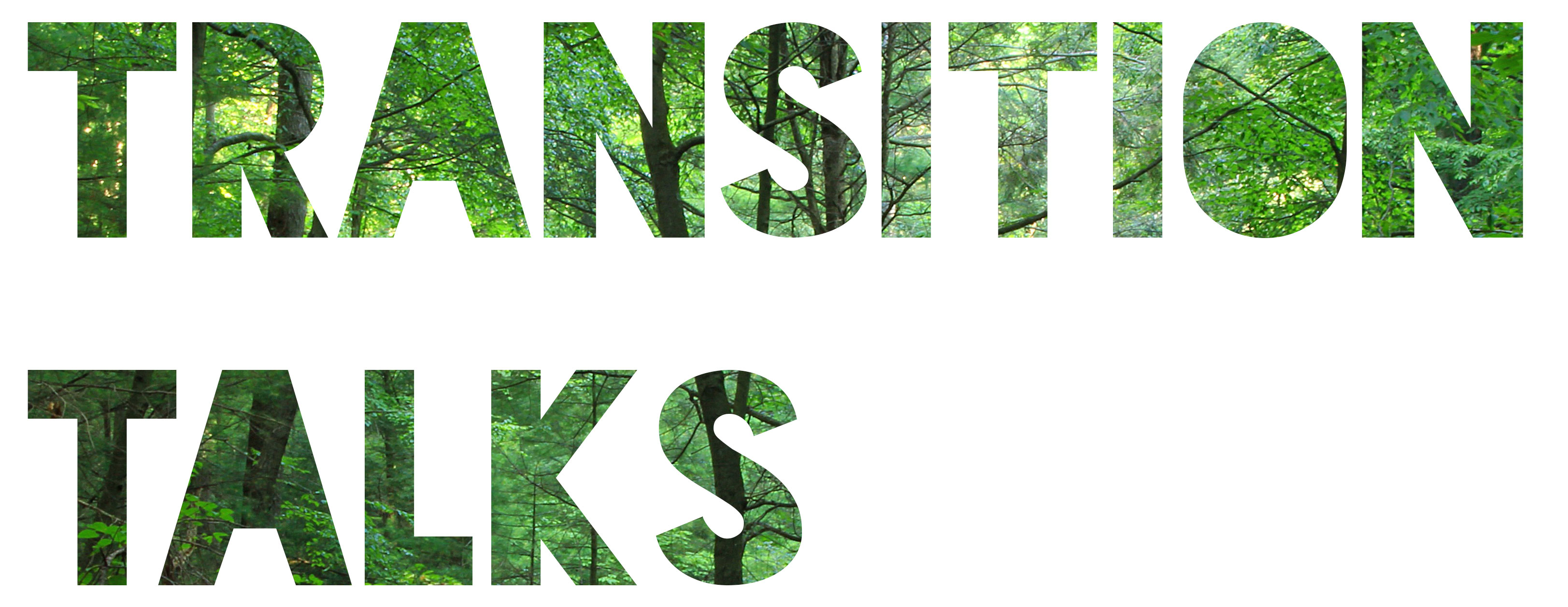 Transition talks logo