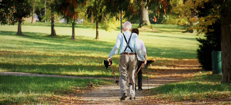 elderly walking in a park