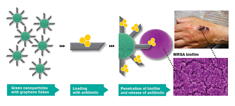Illustration of how nanoparitcles are loaded sith graphene spikes and antibiotics