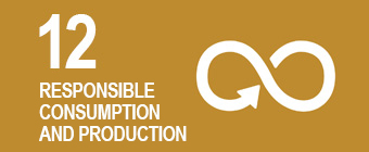 UN global goal 12: Responsible consumption and production