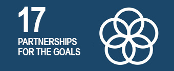 UN global goal 17: Partnerships for the goals