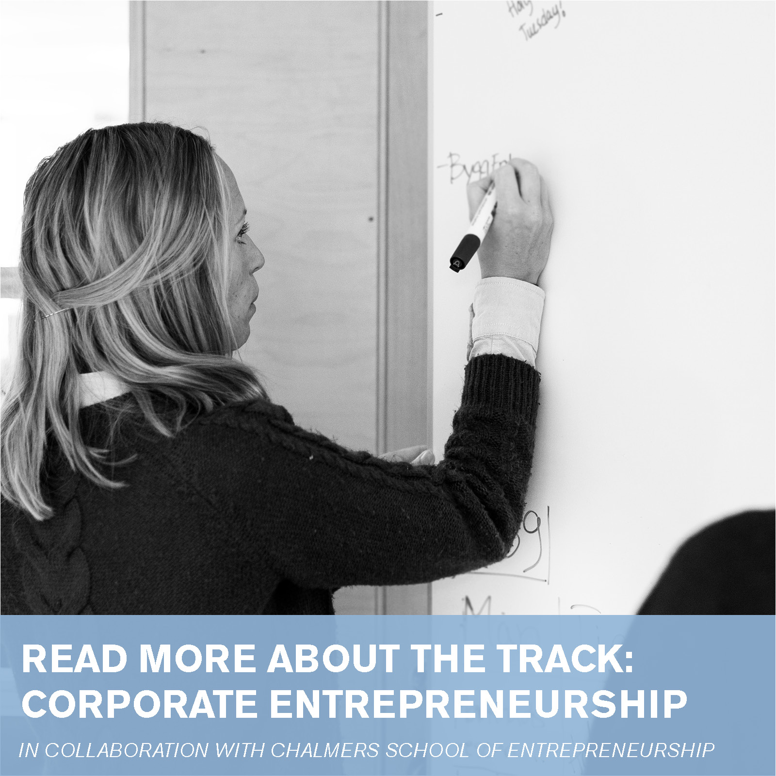 Information about Corporate Entrepreneurship track