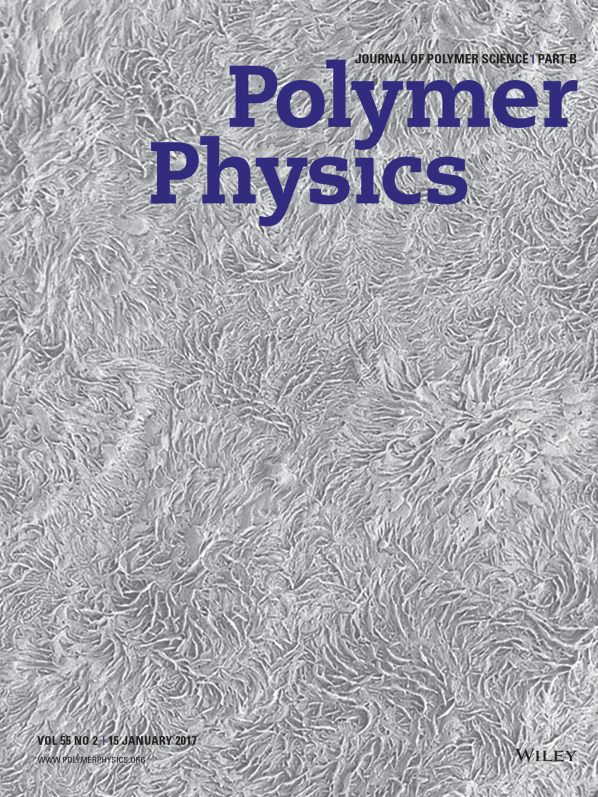 2017 Polym Sci B cover image.png